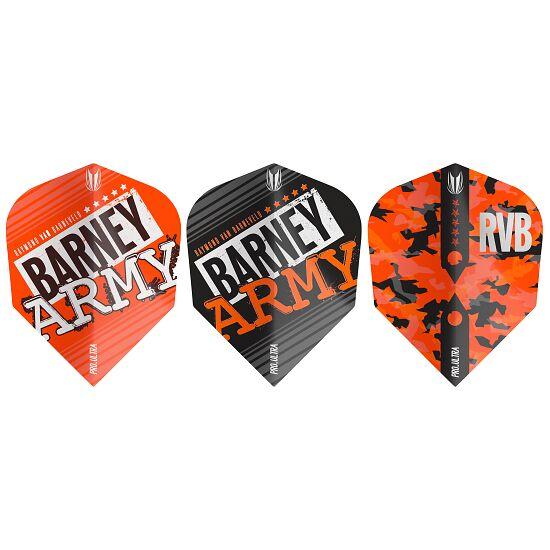 "Target Raymond van Barneveld Flights ""Barney Army"""