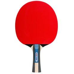 "Sport-Thieme Tischtennisschläger  ""Champ"""